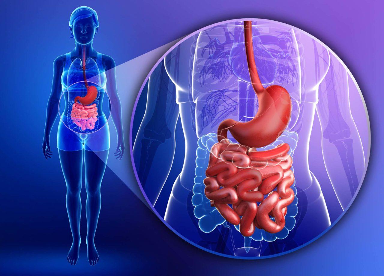 Patologie del tratto gastrointestinale: curare i sintomi o le cause?