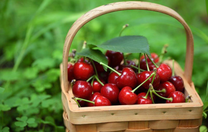 Frutta e Verdura di Stagione - Maggio